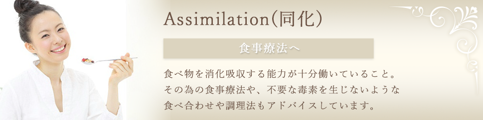 Assimilation(同化)
