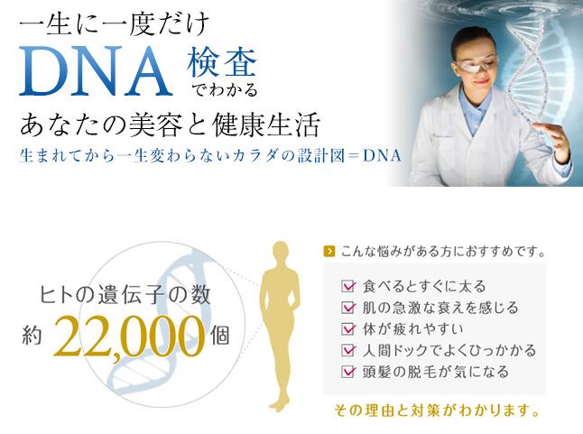 自分の痩せ方と体質を知るDNA検査
